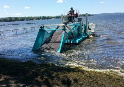 CLA begins shoreline demonstration project
