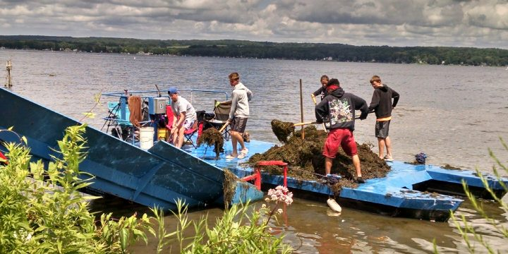 2021 Summer Lake Cleanup Totals